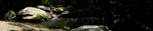 panoramic photo of a mountain stream