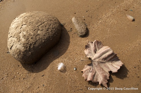 photograph of rocks, a feather and a leaf on the shore of the James River near Richmond, VA