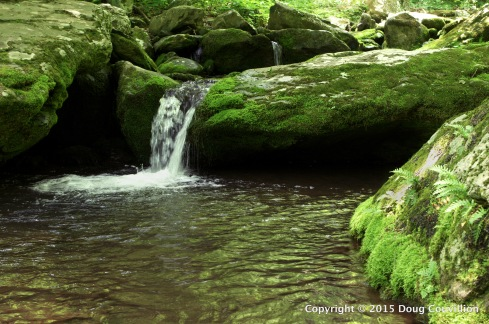 Photograph of a pool in a stream in Shenandoah National Park, Virginia, USA